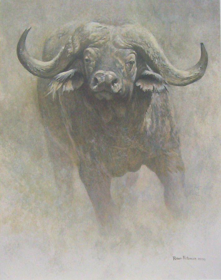 Robert Bateman African Buffalo Sappi Foundation