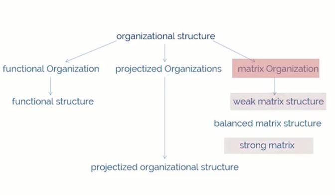 Advance Innovation Group PMP Organization Structure