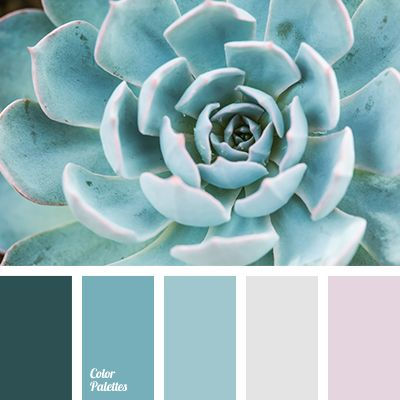Color Palette #2610
