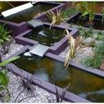 Fish Pond In A Nice Park With A Modern Design