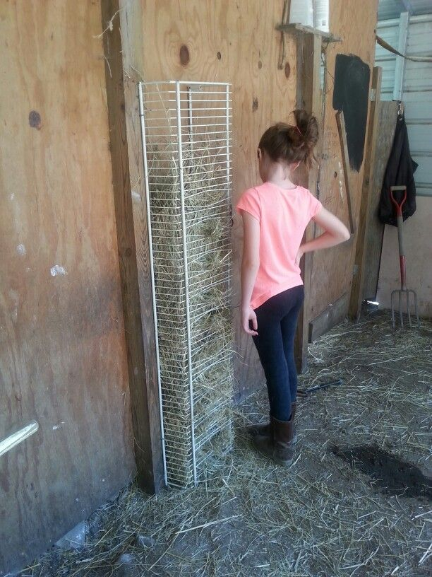 homemade thread sto with pin a feeder rack goat viewing hay cheese