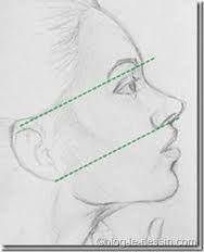 Résultats de recherche d'images pour « apprendre a dessiner un visage »