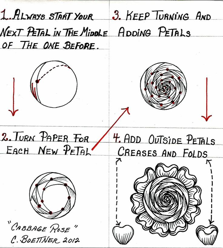 Zentangle Patterns Step by Step | Displaying (20) Gallery Images For Cool Zentangle Patterns Step By ...