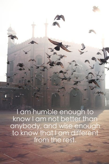 I am humble enough to know I am not better than anybody, and wise enough to know I am different from the rest.