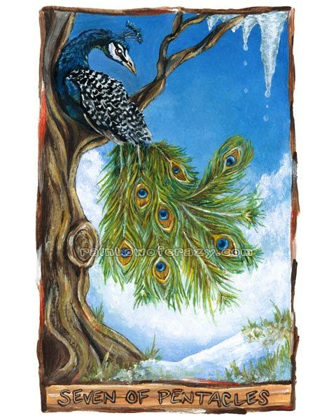 22 Best Images About Peacock Art On Pinterest