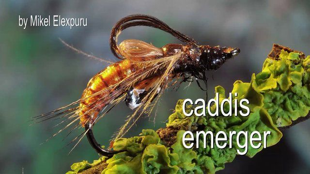 FLYMAGE FLY TYING 11 by Flymage Fly Fishing Magazine. How to tie a caddis emerger. Flymage Fly Tying Video Series: Chapter #11 CADDIS EMERGER by Mikel Elexpuru.