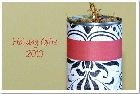 easy forced bulb neighbor gift for holidays