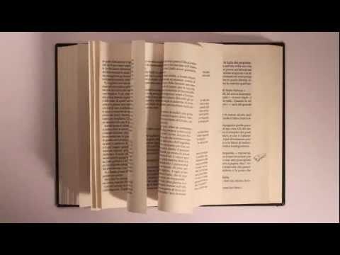 Cose che nessuno sa   la perla e l'ostrica    Dover riassumere trecento pagine in pochi minuti richiede un notevole processo di astrazione, tanto in termini di sintesi che di interpretazione e reinvenzione... http://tropicodellibro.it/booktrailer/analisi-booktrailer/cose-che-nessuno-sa/
