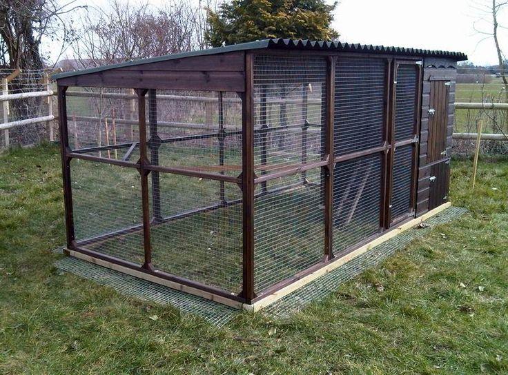 Building a chicken run farmscaping for beneficials farm for Chicken run for 6 chickens