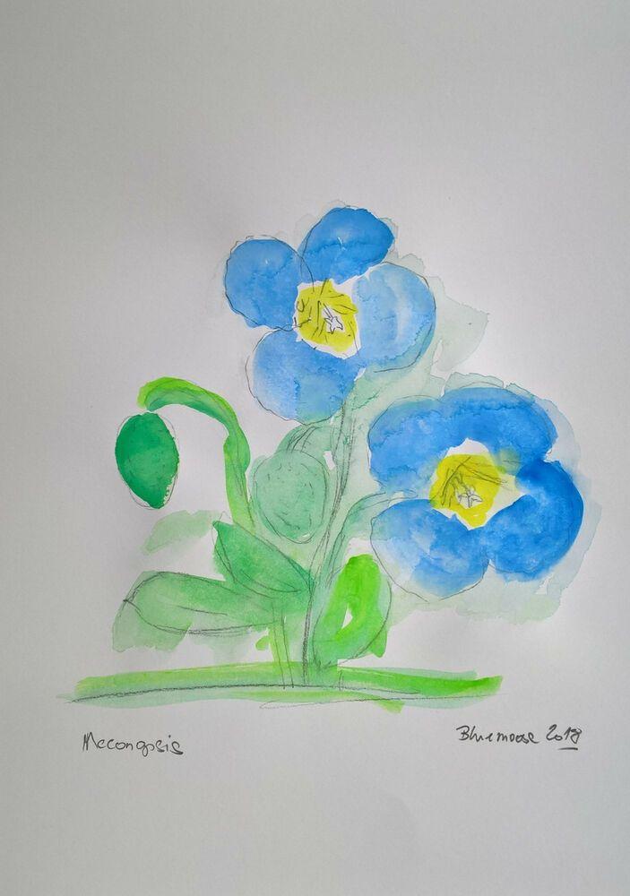 Unikat Mooseart Blumen Zeichnung Aquarell auf Papier  ca.21x30cm Original