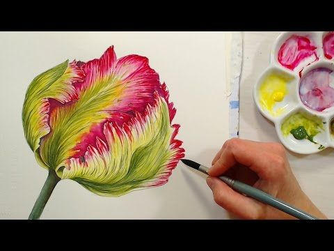 LIVE Today! Let's Paint a Ruffly Parrot Tulip & My New Watercolor Course!   Thefrugalcrafter's Weblog