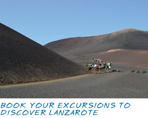 Lanzarote Information | Helping Lanzarote visitors have the best possible…
