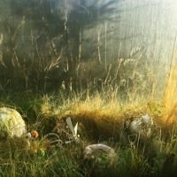 HEAVEN by julie ericsson on SoundCloud