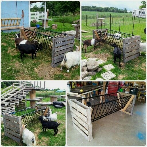 Recycled Our Old Futon Into A Hay Feeder For The Goats Homemade