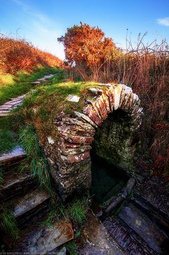 The Well at Saint-Non Chapel ~ Saint-David's, Pembrokeshire, West Wales, Held by tradition to be the birthplace of St. David.