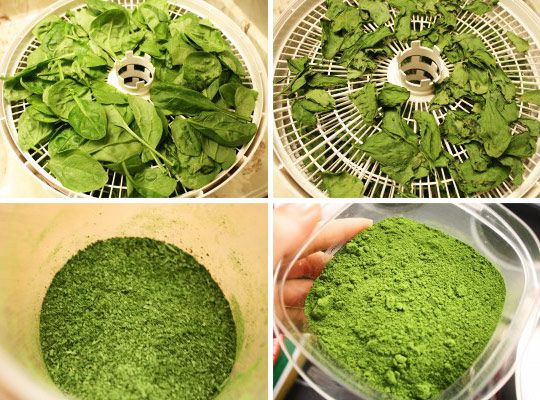 Homemade spinach powder: not only a great way to tastelessly add some nutrition to food, but also a great way to color food green without artificial dyes!