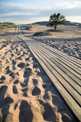 Yyteri Beach is one of the most famous beaches in Finland. It´s located in Pori.