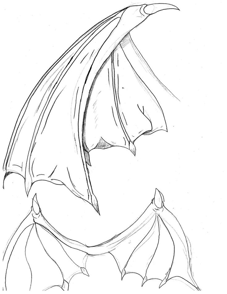 Bat wings drawing bat wings by cybololz draw dragons for How to draw a small bat