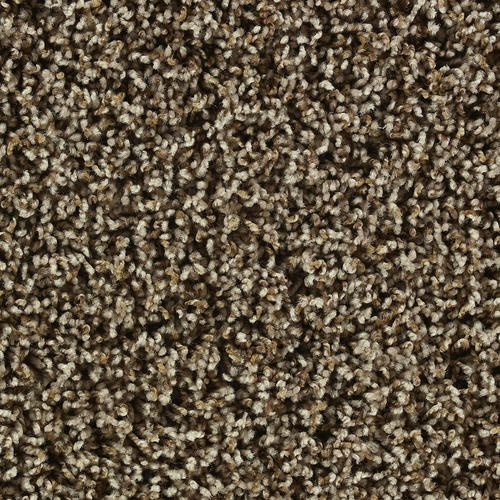Shaw Color Debut Frieze Carpet 12ft Wide - Cabana
