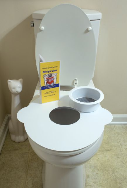 A cat toilet training seat that trains your cat to use the toilet.  It is a cat potty or cat toilet seat. You can potty train kittens as well. It eliminates the use of the litter box and is vet approved.