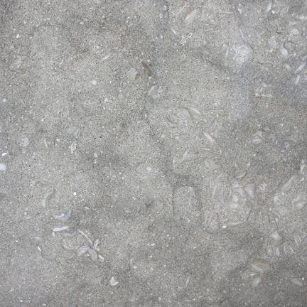Pental Seagrass Polished Limestone