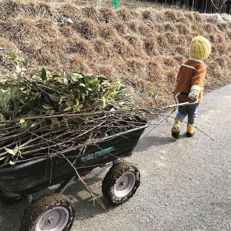 剪定した枝を山へ捨てに行く仕事 #田舎暮らし #庭 #剪定