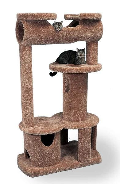 25 best ideas about cat condo on pinterest cat play for Cat tree blueprints