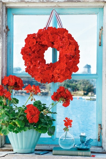 red geraniums by an turquoise blue window