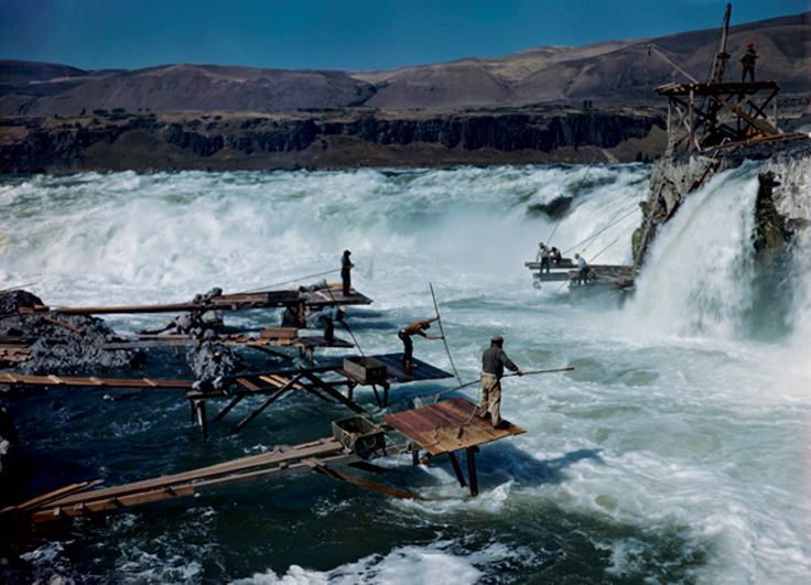 Celilo indians salmon fishing in the columbia gorge for Oregon salmon fishing