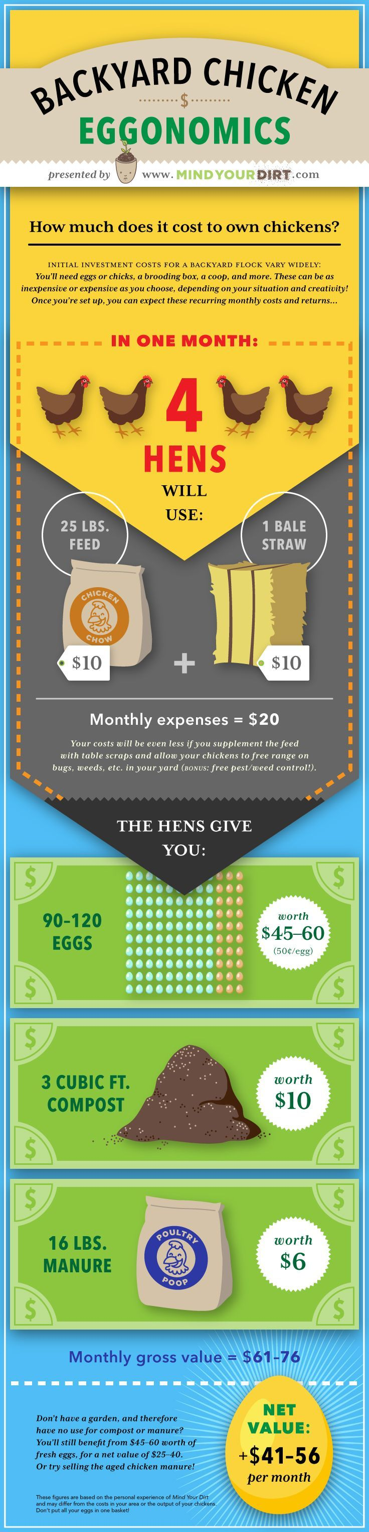 Mind Your Dirt Urban Backyard Chicken Costs Pinterest Infographic. The actual costs and profits of raising urban backyard chickens will surprise you! The price of chicken feed and bedding is nowhere near what you can get from the eggs, manure and compost material! Check it out! Also, enjoy this awesome pinterest infographic...