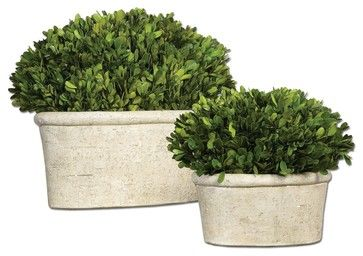 Set of 2 Preserved Boxwood Plants in Mossy Planters transitional-accessories-and-decor