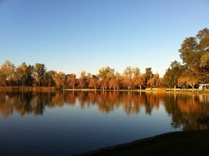 17 best images about my hometown lodi california on for Lodi lake fishing