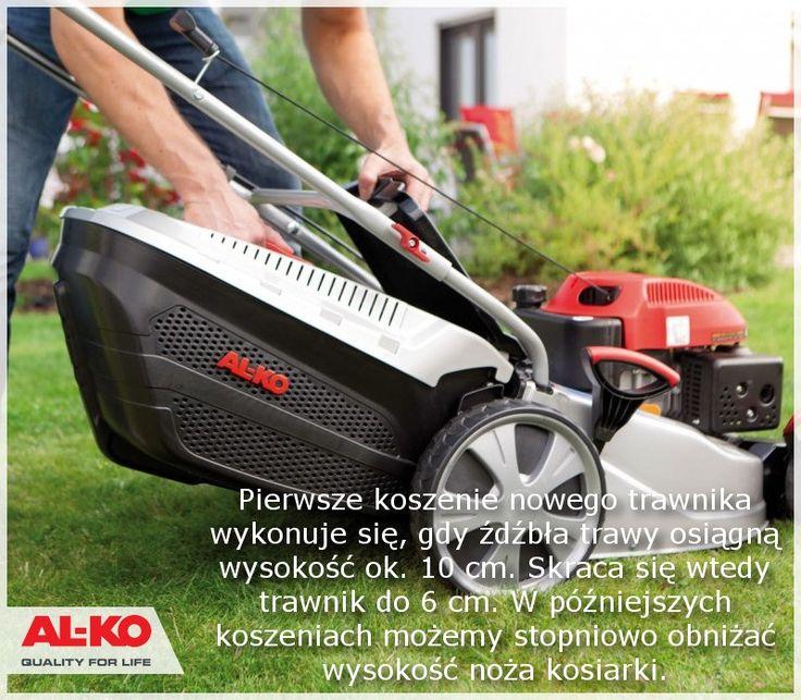 Kosiarka Spalinowa Comfort 51 BR-A http://www.sklepalko.pl/trawniki-koszenie/kosiarki-spalinowe-z-nap/kosiarka-spalinowa-highline-5-14-sp-a-edition-naped.html #trawnik #trawa #kosiarka #mower #lawn #garden