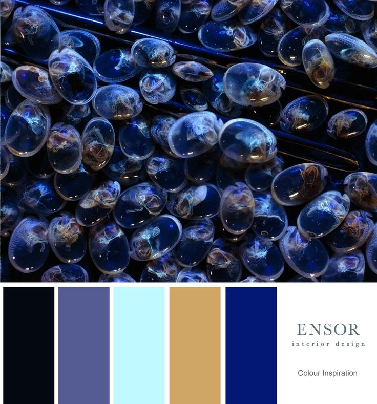 Dark and mystical colour palette #ensor #interior #design #colour #combination