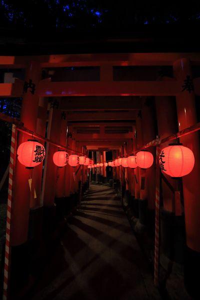 京都写真(Kyoto Photo)の画像 もっと見る