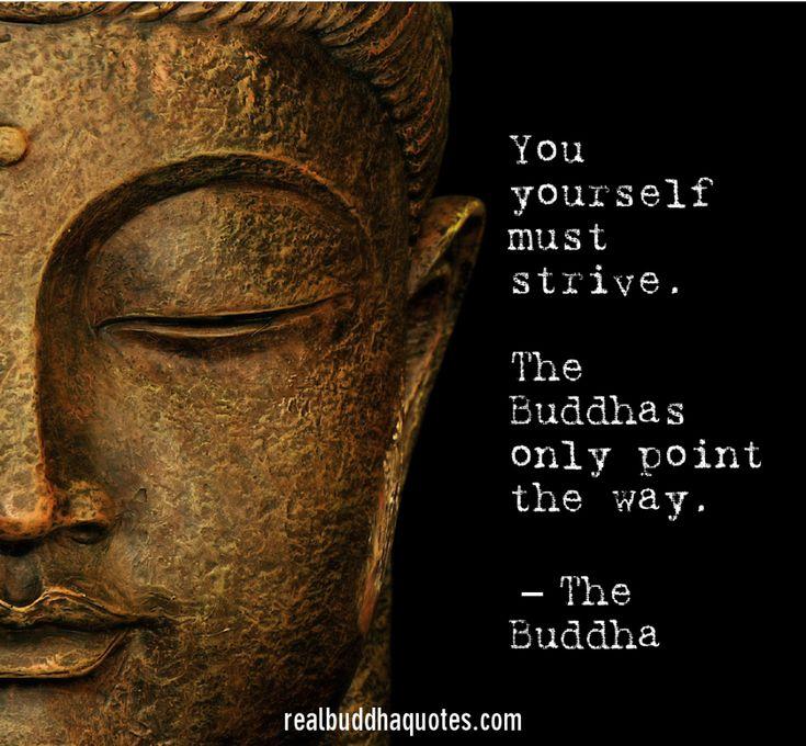 Real Buddha Quotes Interesting 91 Best Buddha's Words Of Wisdom Images On Pinterest  Buddha