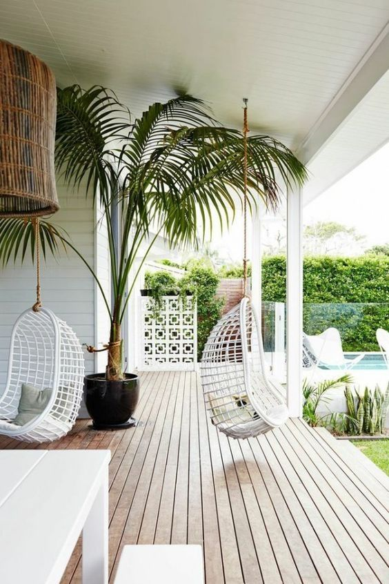 Stylish hanging chair with large palm in a black planter | adamchristopherdesign.co.uk