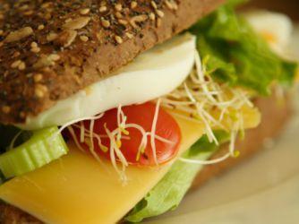 Para llevar: almuerzos y meriendas de verano -  Dr Cormillot