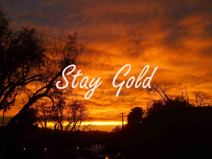 28 best stay golden ponyboy images on pinterest book for Stay gold ponyboy