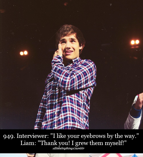 Haha Liam 1D made my day!