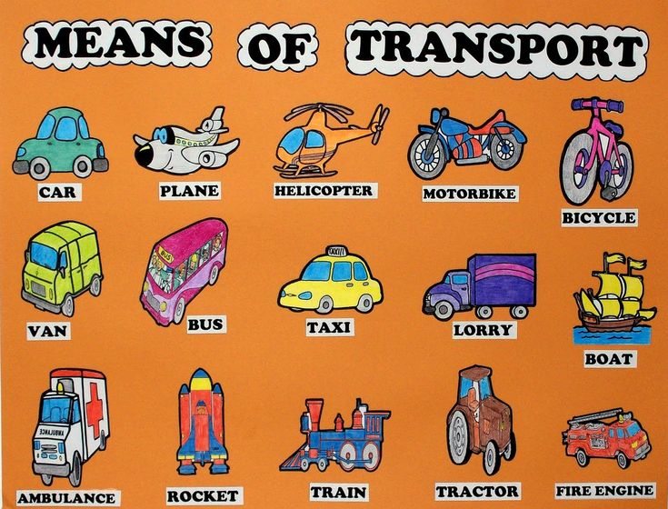 essay on means of transport