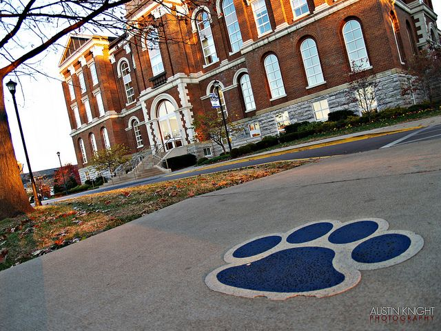 University Of Kentucky: 17 Best Images About Wildcat Country On Pinterest