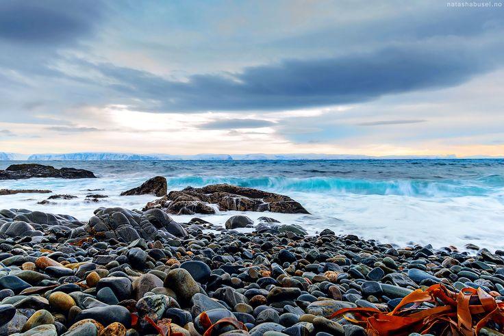 Arctic rocks By Natasha Busel