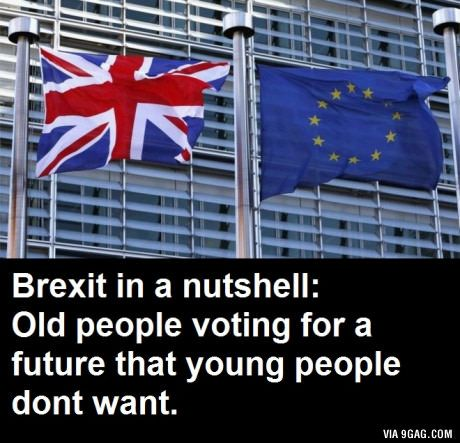 Most people voting to leave were old, most voting to stay were young...