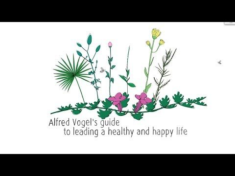 A.Vogel's guide to leading a healthy and happy life