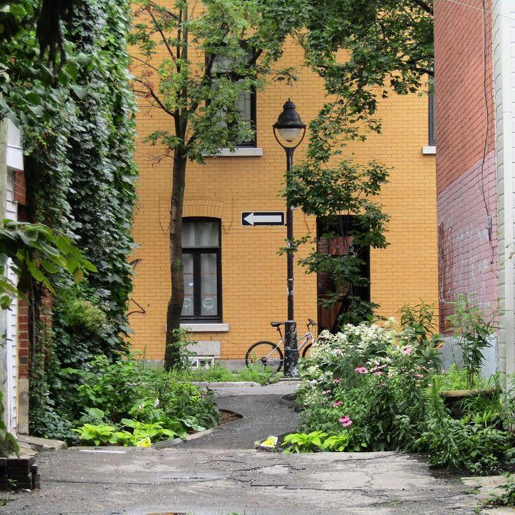 Jolie ruelle verte entre les rues St Hubert et Berri 🌿 One of Montreal's many green lanes 🌱 #ruellesdemontreal #ruellesmontréalaises #ruellesvertes #plateaumontroyal #montreal #lavieamontreal #alleysofmontreal #alleys#greenlanes