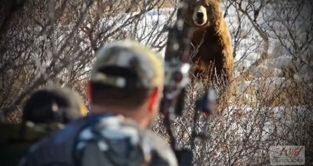 Nerve-Wracking Archery Hunt for Alaskan Brown Bear Called in with Predator Call [VIDEO]