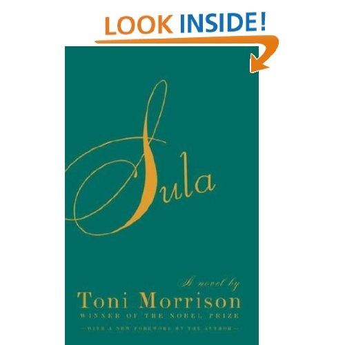 toni morrison sula 1999 ) toni morrison's sula: a satire on binary thinking sees sula as toni morrison's satire on clichéd thinking in characters who live in medallion, ohio and celebrated the lives of ordinary people who daily must work.
