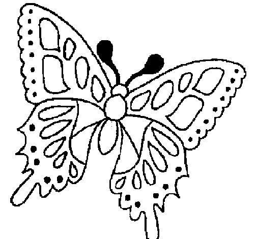 FARFALLA DA COLORARE | Disegno di Farfalla 2a da Colorare - Acolore.com