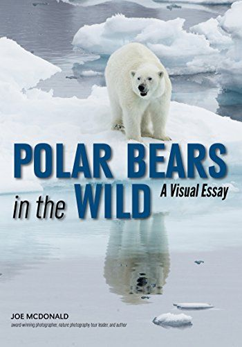 Available 2018! Polar Bears In The Wild: A Visual Tour